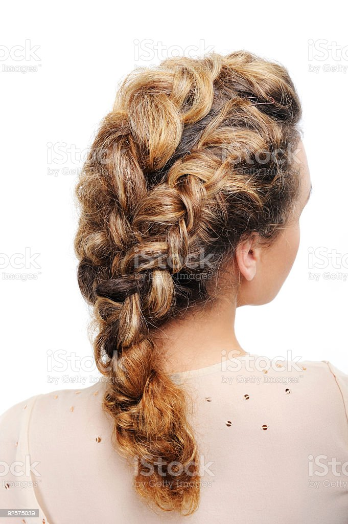 Pigtail - Rear view royalty-free stock photo