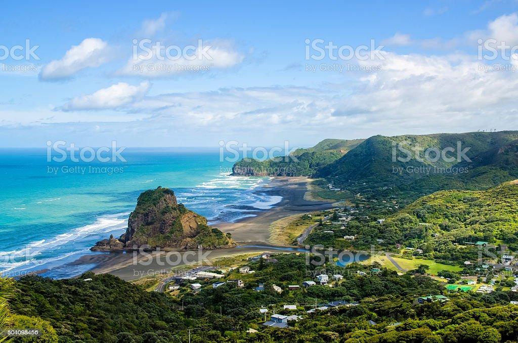 Piha beach in Auckland,New Zealand. stock photo