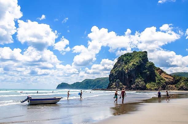 Piha beach in Auckland,New Zealand. stock photo