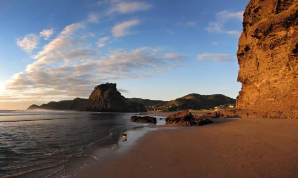 Piha Beach stock photo