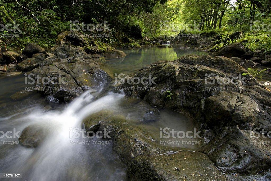 Pi'ina'au stream in the Ke'anae Arboretum, Maui, Hawaii stock photo