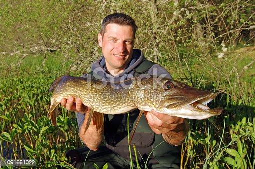 139888169istockphoto Pike fishing, catch of fish 1091661022
