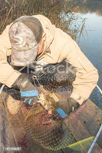 914030378istockphoto Pike fishing on the pond spinning. 1182586097