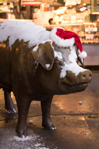 pike place markt - weihnachtsspende stock-fotos und bilder
