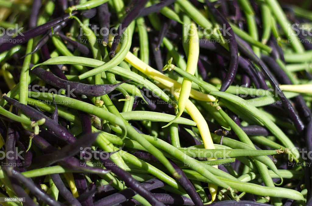 Pile Green, Yellow, and Purple Beans (Close-up, Full Frame) stock photo