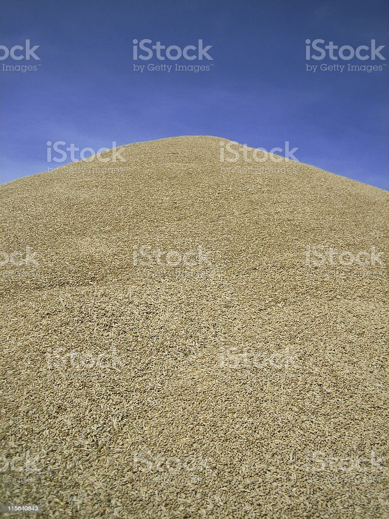 Pile o' Barley royalty-free stock photo
