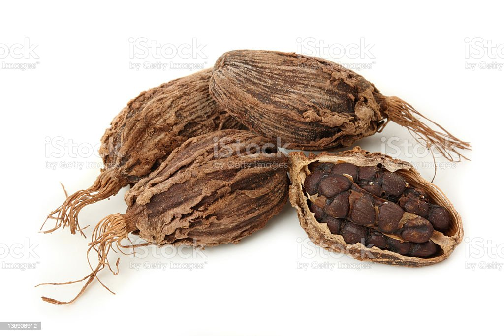 Pile of 4 black cardamom, one is opened  stock photo