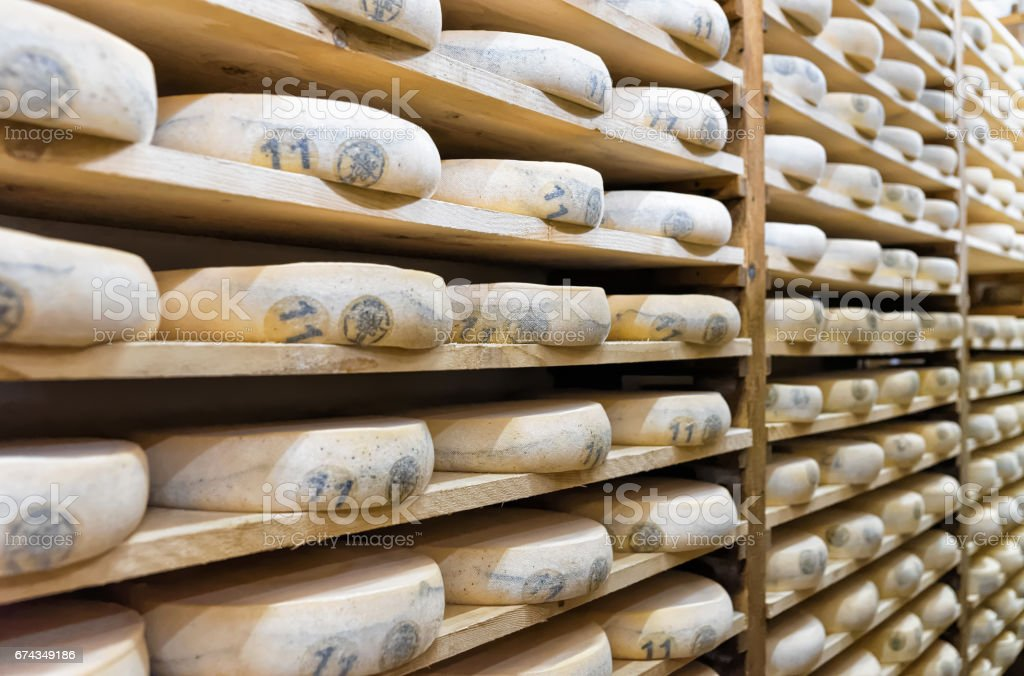 Pile of aging Cheese in maturing cellar in Franche Comte stock photo