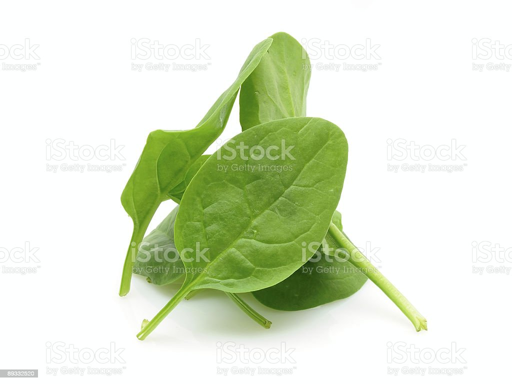 Pile of baby spinach stock photo