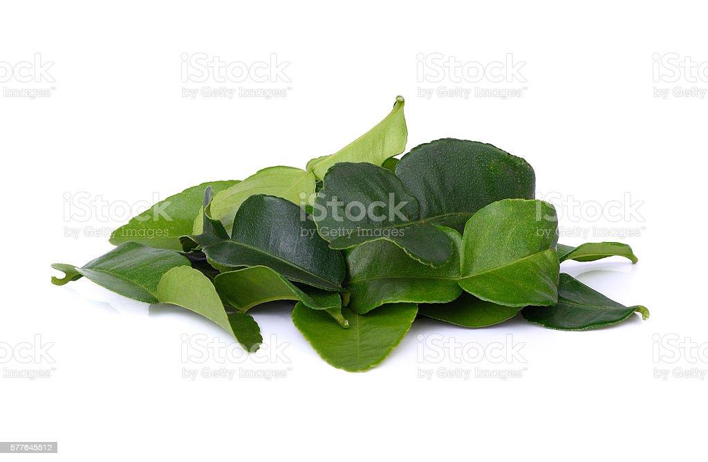 pile of bergamot leaves on white background stock photo