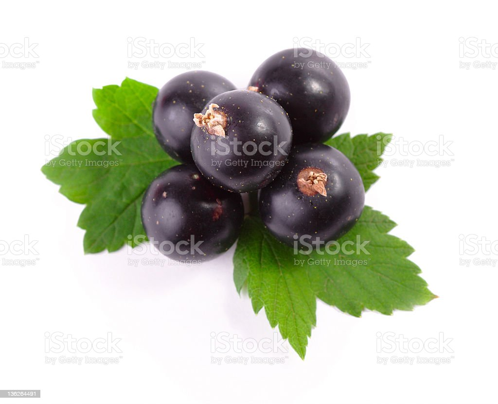 Pile of berries isolated on a white background stock photo