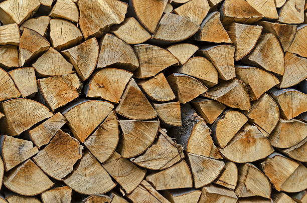 Pile of chopped firewood prepared for winter, Lakatnik – Foto