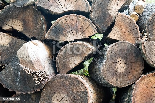 istock Pile of chopped wood material 843298188