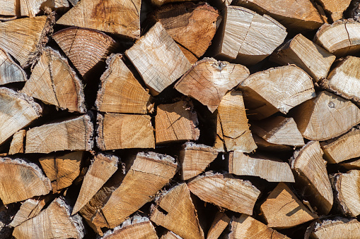 Pile of chopped wood material