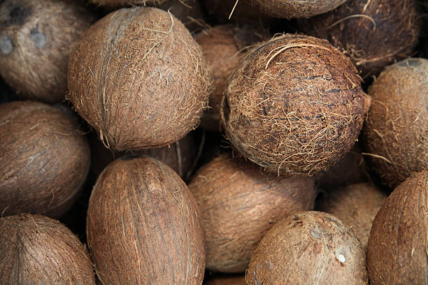 Pile of coconuts stock photo