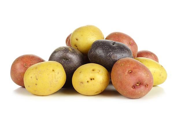 haufen von farbigen kleinen kartoffeln und weiß - lila palette stock-fotos und bilder