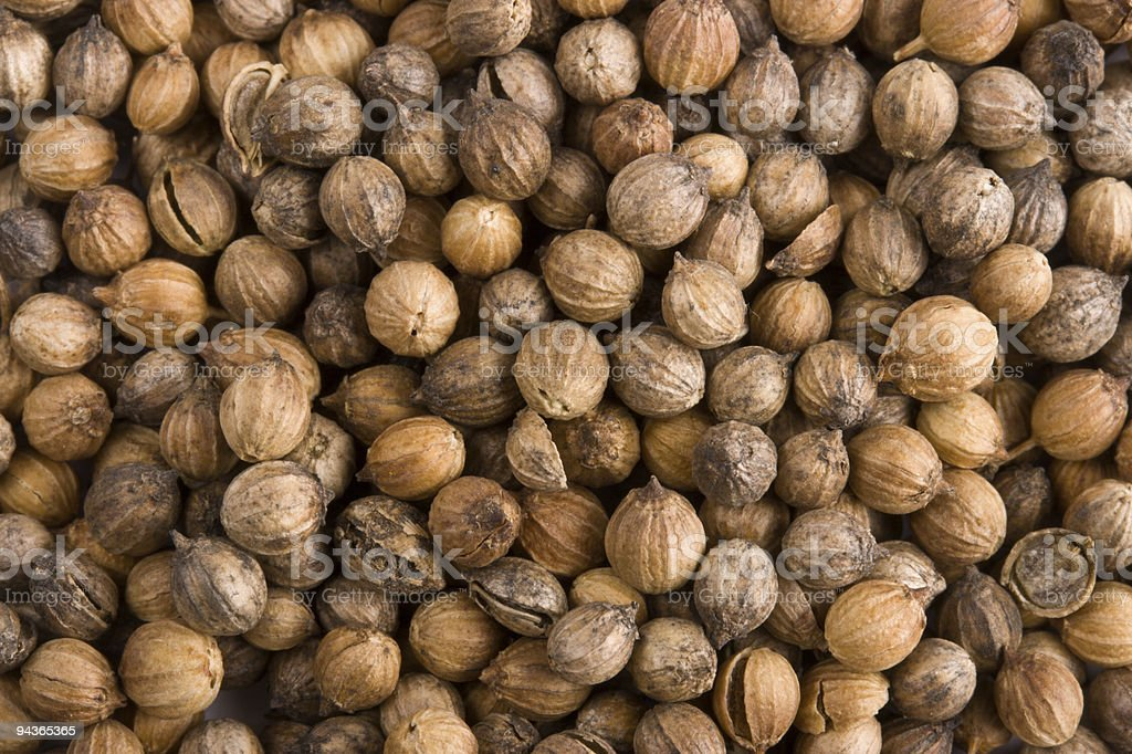 Pile of coriander close up royalty-free stock photo