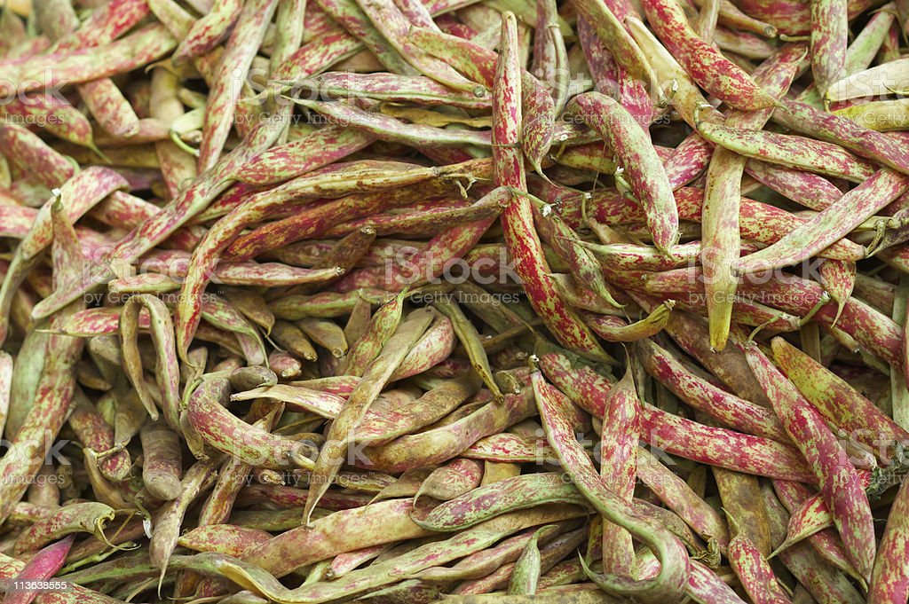 Pile of Cranberry Beans royalty-free stock photo