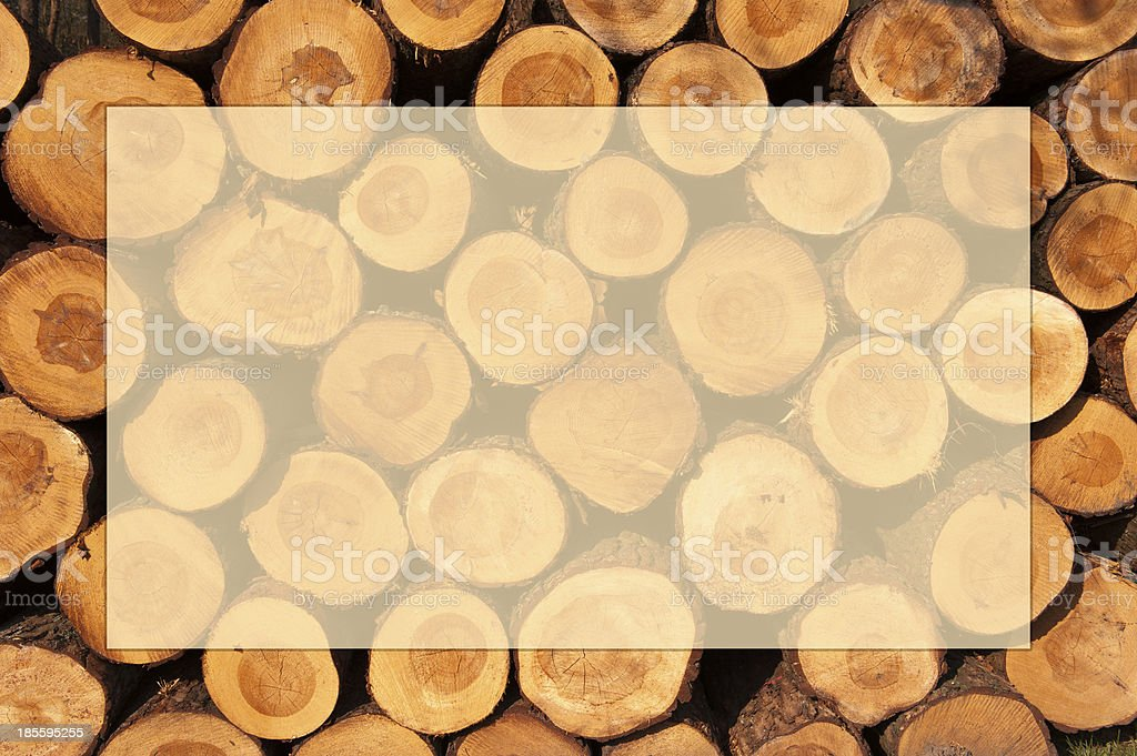 Pile of cut tree trunks with year rings in framework stock photo