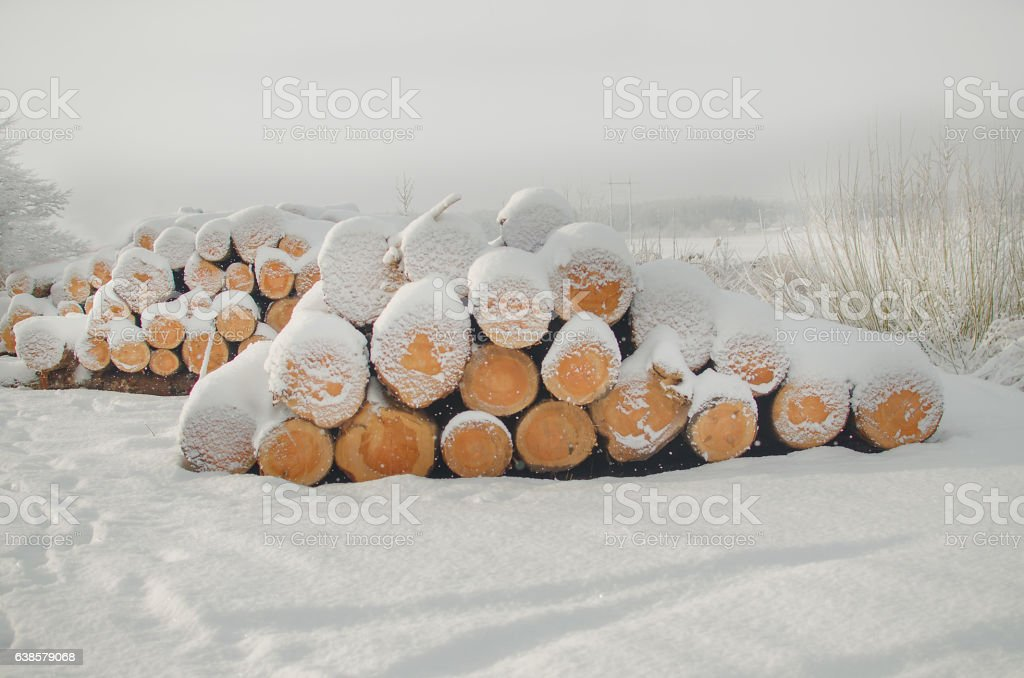 Pile of cut wood logs under  winter snow stock photo