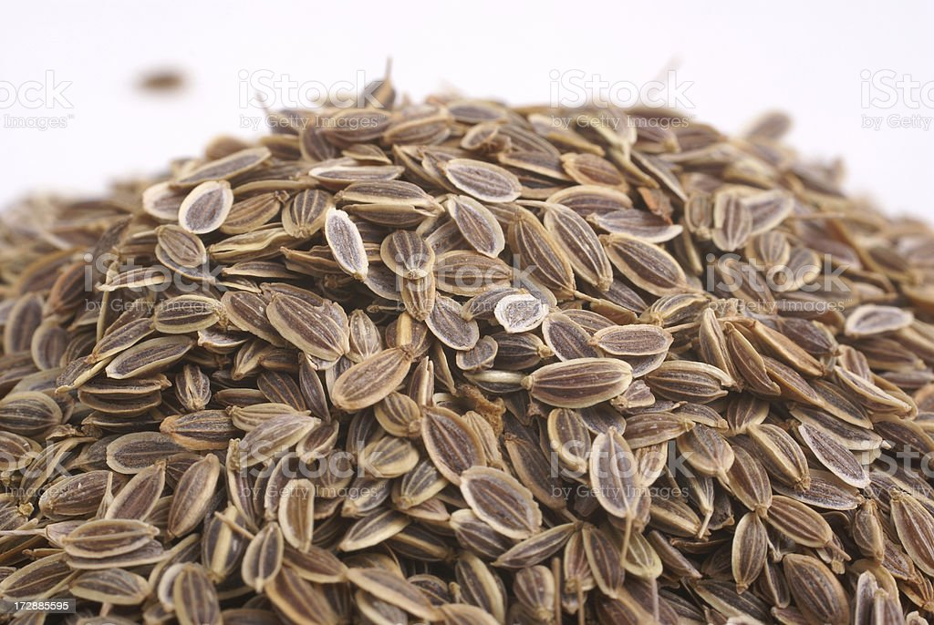 pile of dill seed stock photo