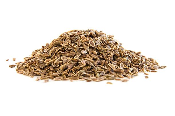 Haufen von dill Samen auf Weiß – Foto