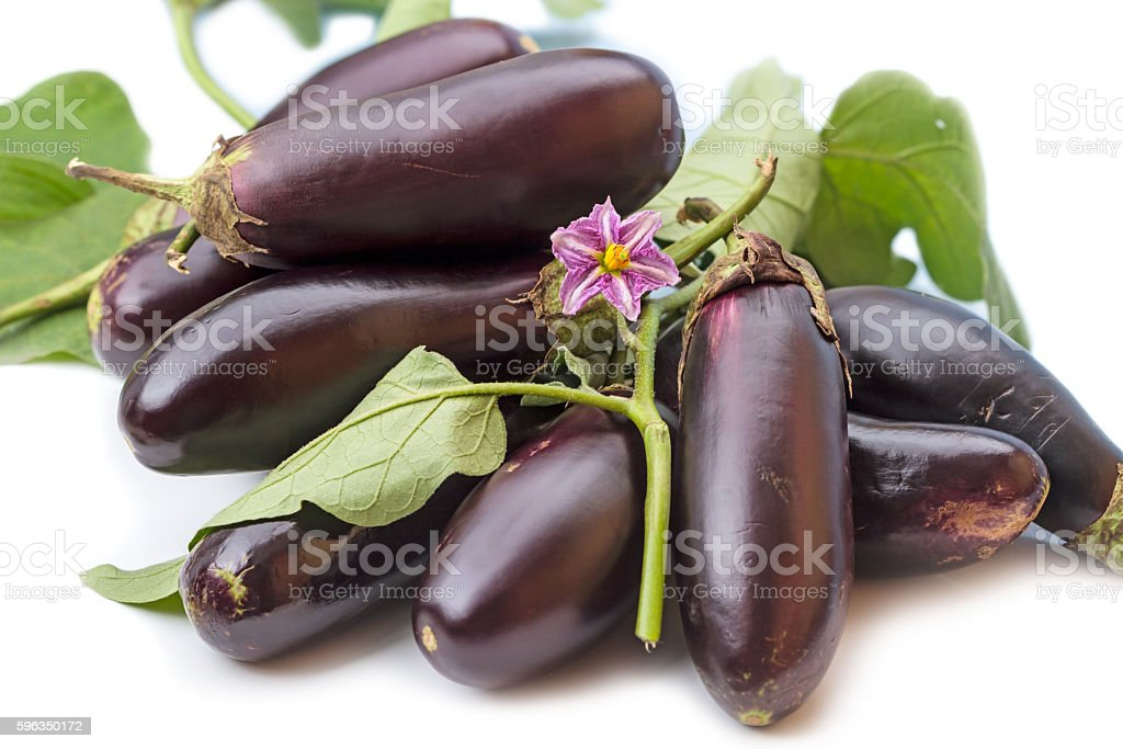 Pile of eggplant and a flower Lizenzfreies stock-foto