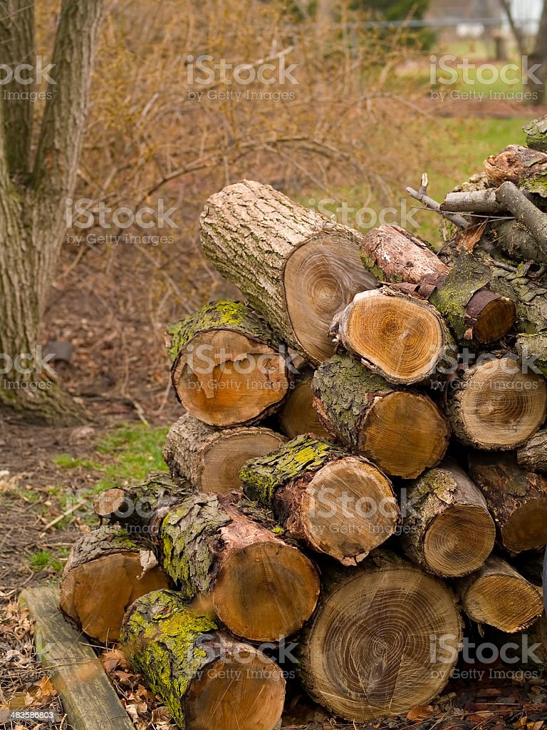 Pile of Firewood royalty-free stock photo