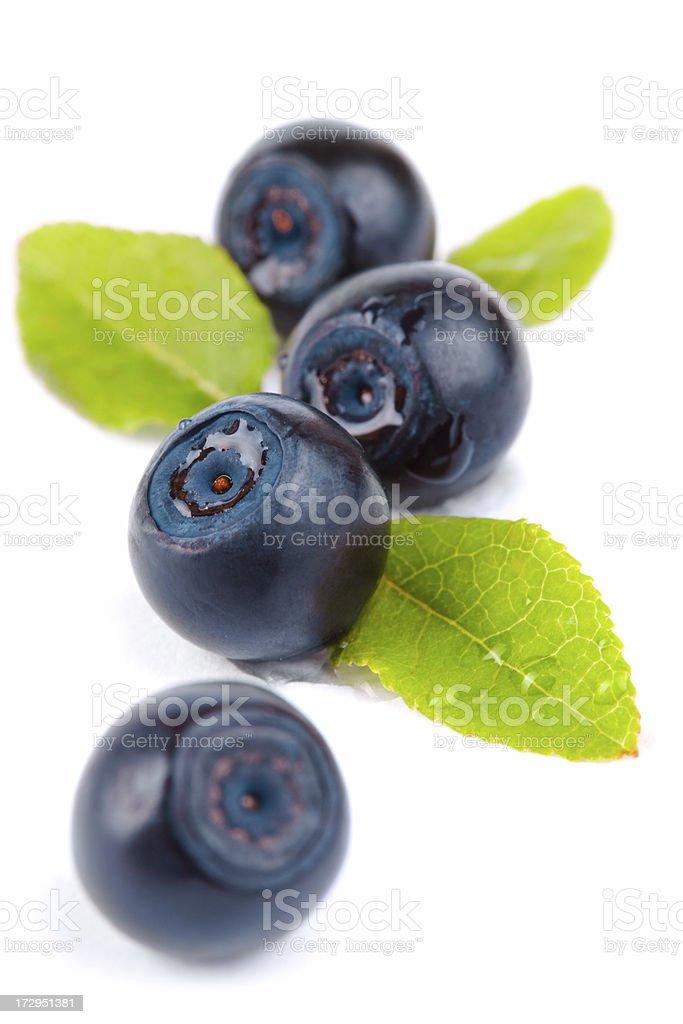 Pile of fresh blueberries on white royalty-free stock photo