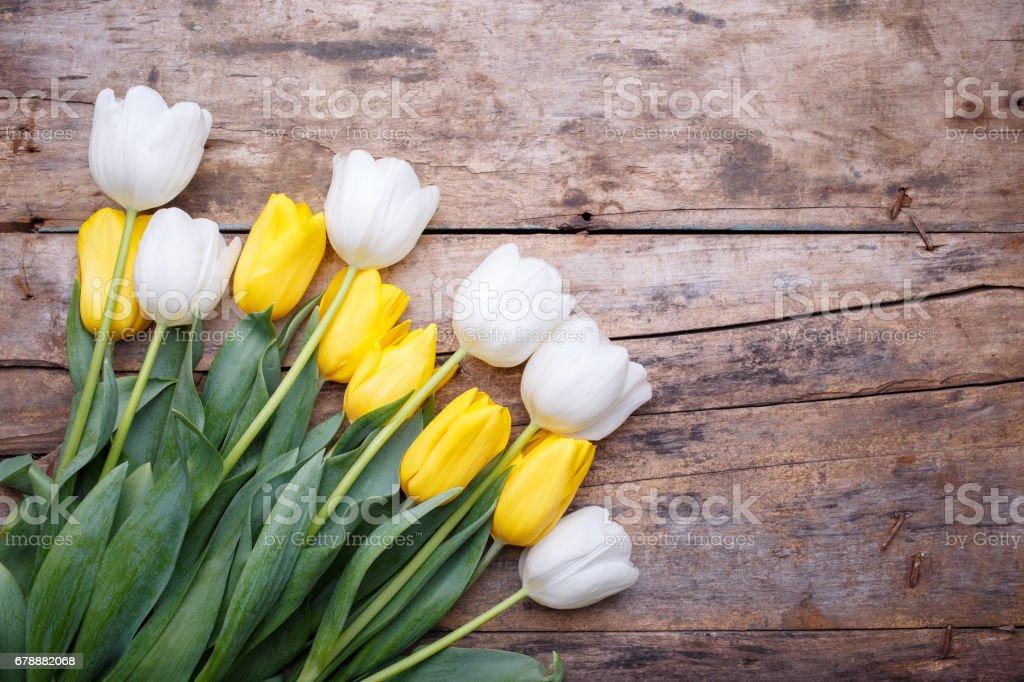 Masanın üzerine taze beyaz ve Sarı laleler yığını royalty-free stock photo
