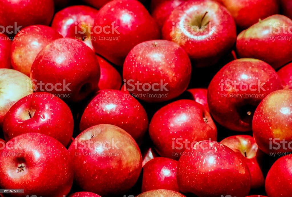 pile of gala apples photo libre de droits