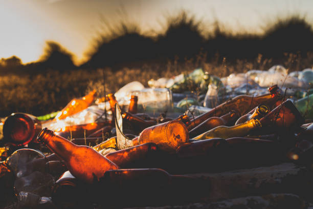 pile of glass bottles waste a pile of glass bottles waste garbage in a filed environmental damage stock pictures, royalty-free photos & images