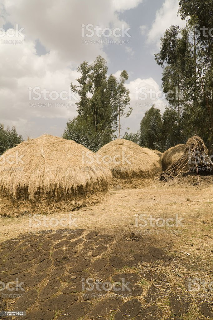 Pile of hay royalty-free stock photo