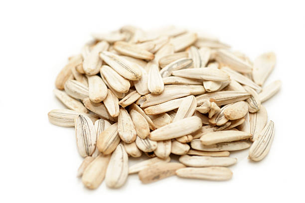 Pile of isolated sunflower seeds stock photo