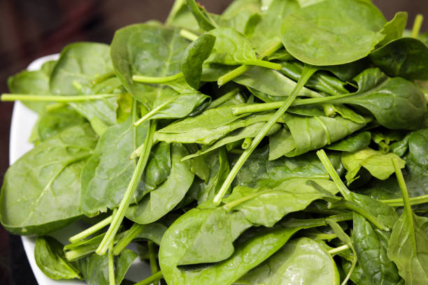 A pile of leafy green spinach stock photo