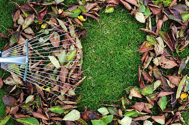 Herbst Blätter mit Rechen – Foto