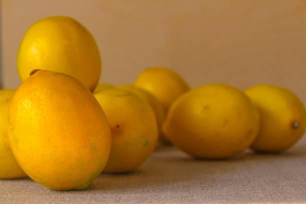 Pile of lemons stock photo