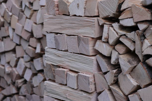 Pile of log. Selective focus. stock photo