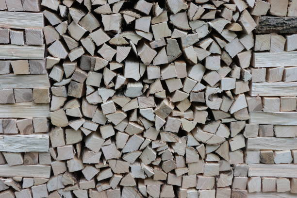 Pile of logs. Front view. stock photo