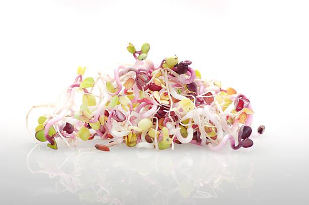 Pile of organic radish sprouts on white background. stock photo