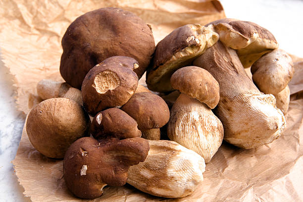 A pile of porcini mushrooms on a brown crumpled paper stock photo