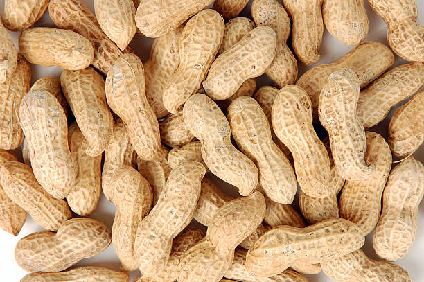 Pile of raw peanuts in shells stock photo