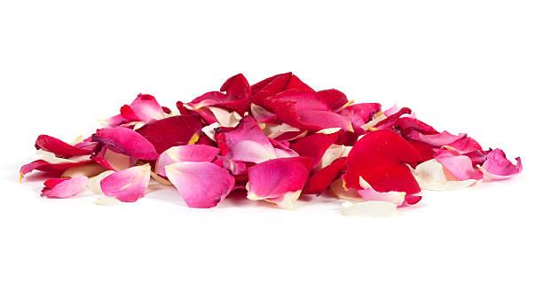 Pile of rose petals picture id471416883?b=1&k=6&m=471416883&s=612x612&w=0&h=tu7fxuxctewfqrz4gzolfkagc3kasqjremudsa1qwqw=