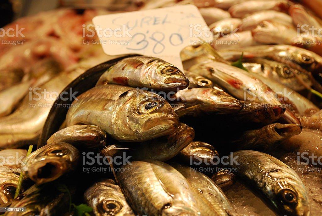 Pila de sardines foto de stock libre de derechos