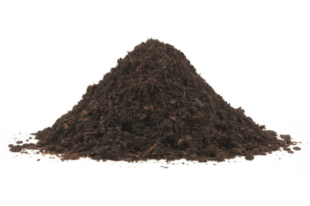 pile of soil humus - heap stock pictures, royalty-free photos & images