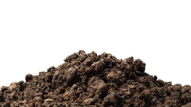 Pile of soil isolated on pure white background with ground suitable for growing plants or gardening. Natural soil piles filled with good minerals or natural pH. stock photo