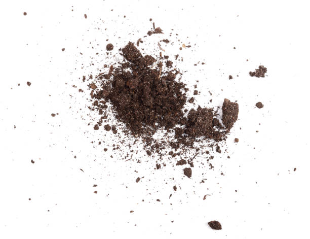 pile of soil isolated on white background, top view - dirt stock photos and pictures