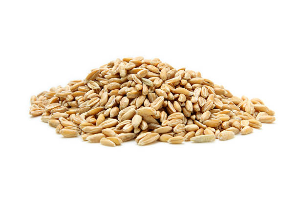 pile of spelt isolated on white pile of spelt grain spelt stock pictures, royalty-free photos & images
