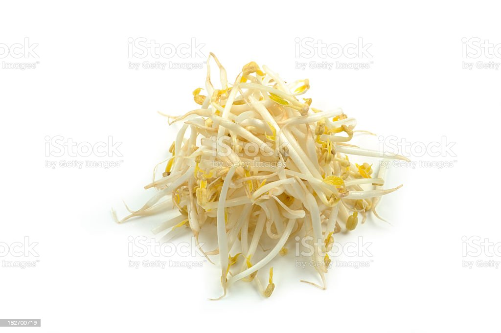 A pile of white bean sprouts on a white background stock photo