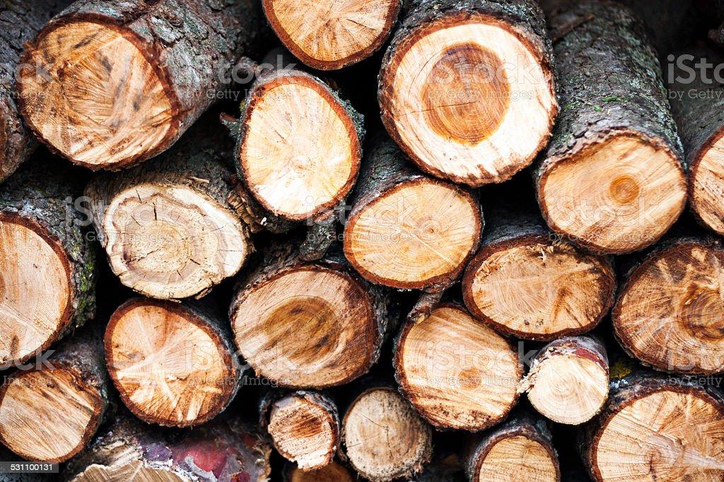 Montón de madera - foto de stock